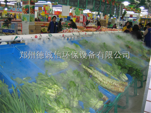 蔬菜加湿器多少钱一台
