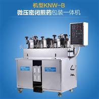 KNW-B煎药包装一体机