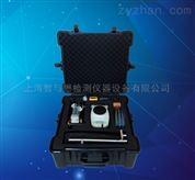 纯蒸汽质量检测仪厂家、蒸汽品质测试仪