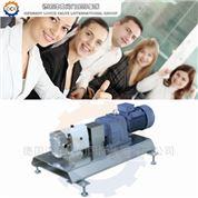 進口衛生齒輪泵,供應商(德國洛克)