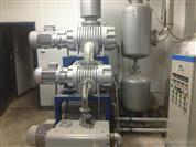 羅茨旋片泵真空泵