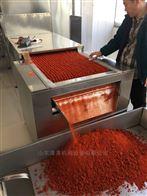 kl-60-8辣椒碎粉圈干燥杀菌设备