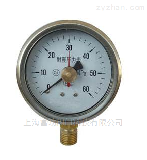 * Y-40径向压力表