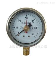 廠家直銷 Y-40徑向壓力表
