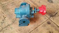 貴陽發貨噴射齒輪泵 現貨LCB-3B乳化瀝青泵