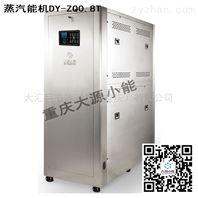 立机式食品加工蒸汽发生设备