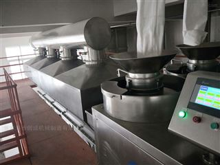WDG系列食品生产线厂家