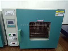 电热恒温鼓风干燥箱DHG