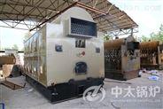 卧式双锅筒 DZH型生物质蒸汽锅炉  厂家直销