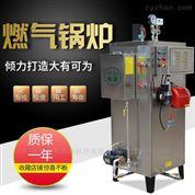 旭恩節能環保全自動燃氣蒸汽發生器鍋爐