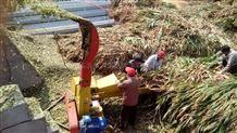 百草皆宜的鍘草機質量效率無懸念