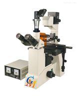 GFM-600 系列倒置荧光显微镜