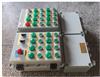 灌装机防爆仪表控制箱