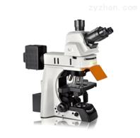 NE910生物显微镜