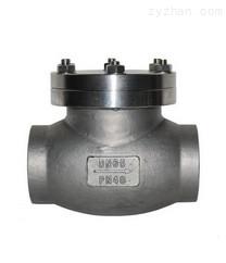 低温止回阀DH61H-25P DN32