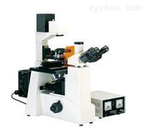 FRD-4C科研級倒置熒光顯微鏡