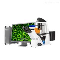 BDS400-FL倒置荧光显微镜