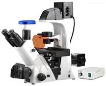 BDS500-FL倒置荧光显微镜
