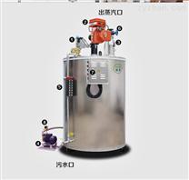 旭恩300公斤燃氣蒸汽發生器大型蒸汽鍋爐