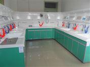 定制 胃鏡腸鏡清洗工作站洗消毒機三強廠家