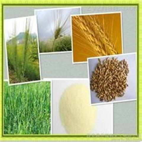 麦芽膳食纤维5 -30 长期供应