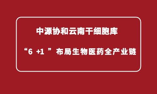 """中源协和云南干细胞库""""6+1""""布局生物医药全产业链"""