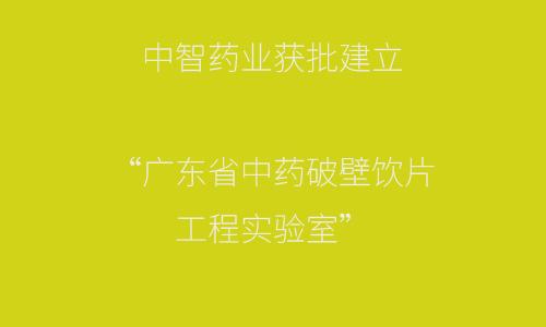 """中智药业获批建立""""广东省中药破壁饮片工程实验室"""""""